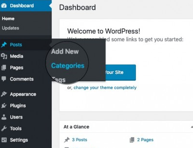 select category, add new category to wordpress, create Categories and Tags for WordPress Posts