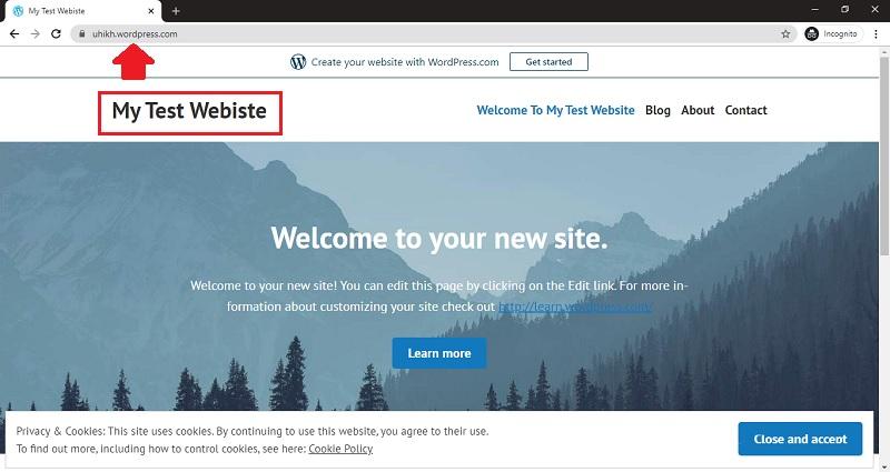wordpress site launch