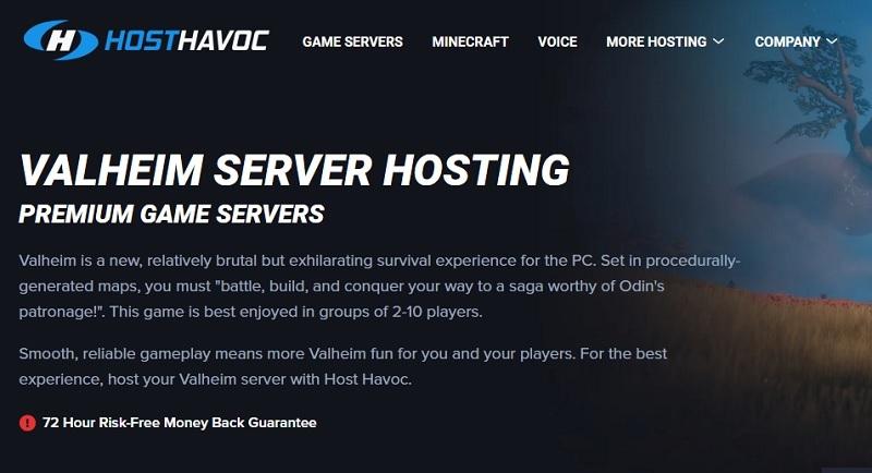 hosthavoc valheim server hosting