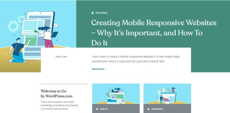 WordPress allows anyone with the skills to fully customize
