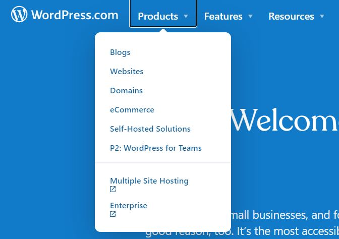 Blogs, websites, Domain, eCommerce, Self-Hosted Solutions